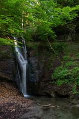 Mutzbachfall (Role Bigler) Tags: emmental landschaft natur schweiz sony spring suisse switzerland tree wasserfall frühling landscape mutzbach mutzbachfall mutzbachtal nature rock sonyalpha6000 water waterfall