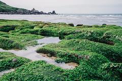 老梅 (aelx911) Tags: a7rii a7r2 sony carlzeiss fe1635mm fe1635 landscape ocean taiwan taipei greenreef 台灣 台北 石門 老梅 綠石槽