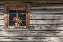 The old window of old wooden house. Background of wooden walls (AudioClassic) Tags: old window house estonia baltic wood wooden vintage architecture building brown home traditional wall background exterior texture rustic rural retro style frame countryside country rough glass design antique closed village aged detail cottage log ancient pattern construction outdoor decor decoration historic hardwood abandoned barn material history rusty obsolete architecturaldetail travel autumn fall