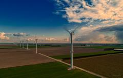 Small, white puffy clouds are made in Holland. You're welcome. (Alex-de-Haas) Tags: dji dutch europa europe fc6310 holland lutjekolhorn nederland nederlands netherlands noordholland p4p phantom phantom4 phantom4pro aerial aerialphotography agriculture akkerbouw beautiful beauty boerenland cloud clouds electricity elektriciteit energie energy farmland farming greenenergy groenestroom landbouw landscape landscapephotography landschaft landschap landschapsfotografie lente lucht luchtfotografie mooi polder power pracht quadcopter renewable schoonheid skies sky spring sundown sunset wind windenergy windturbine windenergie windkracht windmolen wolk wolken zonsondergang lutjewinkel northholland