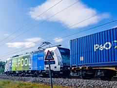 LINΞΛS 186-295 met P&O container shuttle @ Kermt (Hasselt) (Avinash Chotkan) Tags: railcolor railpool br186 traxx lineas po containers ferrymasters trains belgium 186295