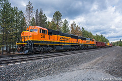 BNSF 283 West at Algoma, ID (evanlofback) Tags: railroadbnsf spokanesub enginebnsf bnsf283 sd75m h3 work mow algoma cloudy spring