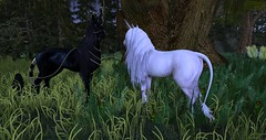 Teegle Photo Contest (Original Size) (schmetterlingchen.resident) Tags: cinnamon teegle teeglepet hanoverian second life virtual world fantasy unicorns unicorn maitreya rein