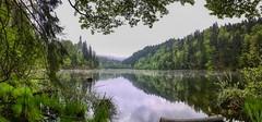 Längsee panorama in Tyrol, Austria (UweBKK (α 77 on )) Tags: längsee österreich lake mist morning water reflection tree bush forest green nature outdoors tyrol tirol austria europe europa iphone