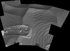 Cresting a Ripple, variant (sjrankin) Tags: 18may2019 edited panorama tracks treadmarks wheelmarks sand ripples craterfloor galecrater msl curiosity nasa mars grayscale app output colorized bayerdecoded