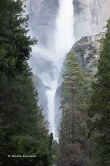 BK0_1804 (b kwankin) Tags: california yosemitefalls yosemitenationalpark