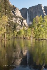 BK0_1611 (b kwankin) Tags: california yosemitefalls yosemitenationalpark