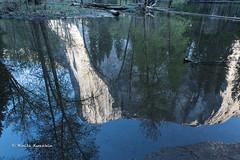 BK0_1596 (b kwankin) Tags: california elcapitan tbd yosemitenationalpark