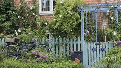 Garden Fence (Mel Low) Tags: smileonsaturday fancyfence walberswick