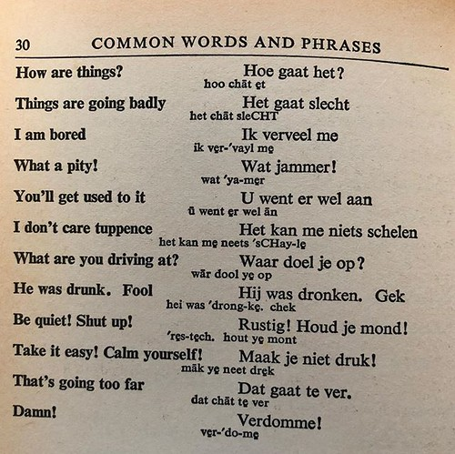 Collins Dutch Phrase Book, 1968. Sounds like an eventful night out.