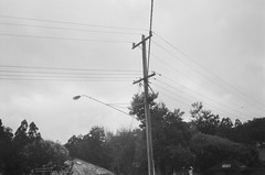 Power lines pole and street light (Matthew Paul Argall) Tags: keystoneeverflash3570 35mmfilm kentmere400 400isofilm blackandwhite blackandwhitefilm powerlines powerlinespole utilitypole streetlight streetlamp