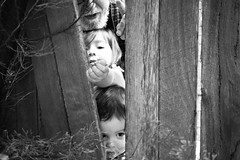 3 through the old paling fence (Busy,Busy,Bl.Mtns.Grandma) Tags: bw paling fence smileonsaturday fancyfence