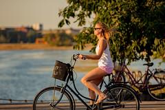 Copenhagen Bikehaven by Mellbin - Bike Cycle Bicycle - 2019 - 0053 (Franz-Michael S. Mellbin) Tags: accessorize bici bicicleta bicicletta biciclettes bicycle bike bikehaven biking copenhagen copenhagenbikehaven copenhagencyclechic copenhagencycleculture copenhagenize cycle cyclechic cycleculture cyclist cykel cyklisme denmark fahrrad fashion fiets people rower street sykkel velo velofashion vélo capitalregionofdenmark