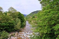 Κόσυνθος (ritvank) Tags: κόσυνθοσ ποτάμι χείμαρροσ kosynthos river stream torrent reká река ρεκά landscape outdoor green