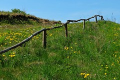 Fence (Tery14) Tags: fence green grass meadow smileonsaturday fancyfence