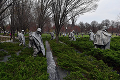DSC_0105-61 (jjldickinson) Tags: nikond3300 109d3300 nikon1855mmf3556gvriiafsdxnikkor promaster52mmdigitalhdprotectionfilter washingtondc cherry tree flower bloom blossom koreanwarveteransmemorial monument art sculpture statue