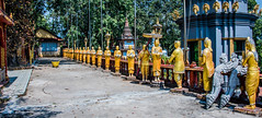 2019 - Cambodia - Sihanoukville - Wat Krom - 3 of 6 (Ted's photos - Returns late November) Tags: 2019 cambodia cropped nikon nikond750 nikonfx tedmcgrath tedsphotos vignetting monks goldenmonks golden perspective watintnhean watintnheansihanoukville sihanoukvillewatintnhean watintnheancambodia watkrom watkromsihanoukville sihanoukvillewatkrom watkromcambodia sihanoukville sihanoukvillecambodia shadow shadows temple buddhisttemple wideangle widescreen