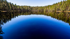 Sipoonkorpi National Park, East-Helsinki 🌴🌴 (Esa Suomaa) Tags: suomi finland forest reflections sipoonkorpi nationalpark nature pond lake lampi water calm planetearth spring olympusomd