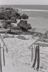 Beach 4 (adam_h_photo) Tags: halfframe olympuspenft monochrome film filmphotography 35mm analogue analog photofilmy ishootfilm istillshootfilm blackandwhite beach