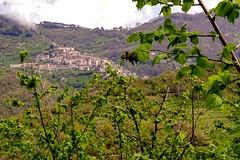.. sui monti Nebrodi .. (rikkuccio) Tags: sicilia flickrsicilia sicily raccuja messina nebrodi