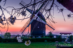 Windmill at sunrise (ankes_photolife) Tags: sunrise sonnenaufgang landschaft landscape mill windmill windmühle view capture composition nature natur colorful sony sony6000