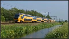 3/11 NSR 8646 - Delft-Zuid, 18-05-2019 (dloc567) Tags: train trein zug zuch delft nsr virm talbot bombardier