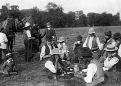 Harvest Lunch (KindredSpiritUK) Tags: horses farming 1900 victorian