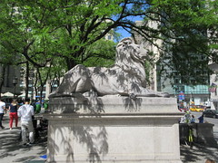 2019 Lion Under Shady Branches New York Public Library 8748 (Brechtbug) Tags: 2019 lions new york public library statues lion hanging shadows 42nd street 5th avenue nyc 05182019 may springtime soon spring weather eventually animal cat feline statue sculpture art cats ave st gargoyles gargoyle reclining repose resting facade stairs front entrance