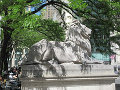 2019 Lion Under Shady Branches New York Public Library 8744 (Brechtbug) Tags: 2019 lions new york public library statues lion hanging shadows 42nd street 5th avenue nyc 05182019 may springtime soon spring weather eventually animal cat feline statue sculpture art cats ave st gargoyles gargoyle reclining repose resting facade stairs front entrance