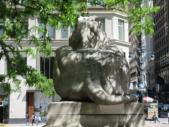 2019 Lion Under Shady Branches New York Public Library 8742 (Brechtbug) Tags: 2019 lions new york public library statues lion hanging shadows 42nd street 5th avenue nyc 05182019 may springtime soon spring weather eventually animal cat feline statue sculpture art cats ave st gargoyles gargoyle reclining repose resting facade stairs front entrance