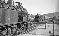 Famalicão, 1 June 1969 (filhodaCP) Tags: cp minho ramaldebraga linhadominho steamlocomotive comboioavapor carvão caminhosdeferro museuferroviário comboiosdeportugal