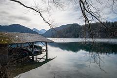 Alpsee (andreas.zachmann) Tags: deu bootshaus spiegelung alpsee schwangau hohenschwangau see himmel äste berge schnee ufer gebäude wolken wald bayern deutschland