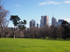 View of CBD from Fitzroy Gardens (procrast8) Tags: melbourne vic victoria australia fitzroy garden nauru house collins place