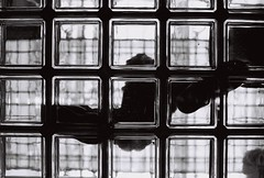 One step above and beyond (Elios.k) Tags: horizontal indoors people oneperson man walk walking glassfloor shotfrombelow perspective seenfrombelow glasstile transparent bokeh glass geometry pattern tile floor step feet dof depthoffield focus foam photographymuseum fotografiemuseumamsterdam blackandwhite mono monochrome bw travel travelling february 2018 vacation canon camera photography amsterdam thenetherlands nederland grain europe dark film analoguephotography scannedfilm analogfilm canona1 a1 analogcamera kodaktrix trix400