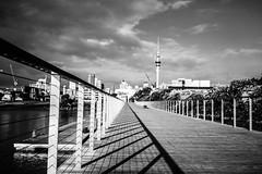 DSC01441-EditDSC07413 (King Joash) Tags: auckland streetphotography newzealand urban sony a7iii