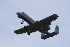A-10 (Warthog) (siamesepuppy) Tags: hanger24brewery redlands california may18th2019 aeroplane airplane plane airshow ccattributionlicense creativecommons cclicense redlandsmunicipalairport