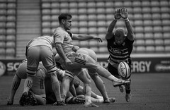 Danny Care with Tom Cruse attempted chargedown (davidhowlett) Tags: ricoharena quins wasps premiership waspsrugby gallagher rugbyunion ricoh rugby coventry harlequins