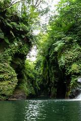 _DSC0107 (Y.S. Lien) Tags: waterplaying rivertracing valley nature thewormhole shiding newtaipei taiwan 戲水 溯溪 溪谷 自然 蚯蚓坑 石碇 新北 台灣