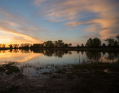 DSC_7709 (alexey.malantsev) Tags: закат небо природа пейзаж весна озеро