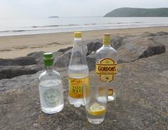 Gin & Scenery (andreboeni) Tags: gin tonic gordons hortus drink brean sands coast beach somerset coastline breandown steepholm