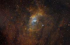 Bubble Nebula - NGC 7635 - Hubble Palette (Astrolights.de) Tags: bubblenebula ngc7635 sho hubblepalette astro astrophotography zwoasi183mmpro moraviang28300fw astrometrydotnet:id=nova3390607 astrometrydotnet:status=solved