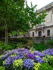 old stomping grounds (ekelly80) Tags: dc washingtondc april2019 spring cosmosclub flowers colors yard light evening green garden dupontcircle