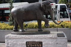 DSCF0164 (digitalbear) Tags: fujifilm xt30 carl zeiss biogon 28mm f28 contax kyocera inokashira park kichijoji tokyo japan harmonica yokocho
