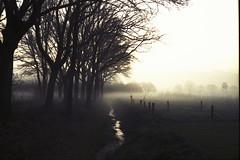 (no49_pierre) Tags: morning april landscape 35mm film rangefinder