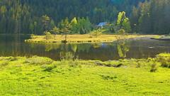 Seehütte (Teresa (be there...)) Tags: bavaria bavarian forest kleiner arbersee zufluss mündung wald wasser sonne bäume bayerischer mittelgebirge trees sun water muzzle inflow canon eos 5d mark iii