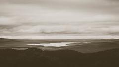 Lake Winona. (issafly) Tags: monochromatic nikon sunset nikkor85mm nature water ouchitamountains ouchitas wanderfar outside blackwhite nationalforest arkansas 2019 arkansasoutdoors monochrome tree bw hiking d500 explorearkansas forest landscape blackandwhite mono mountain naturalstate