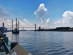 Exploring Savannah, Georgia for the first time! #Savannah #Georgia #PeachState #explore #SouthernStates #travel (ChrisAstro) Tags: southernstates savannah explore georgia travel peachstate