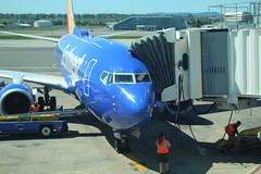 IMG_13338 (mudsharkalex) Tags: oregon portland portlandor airport portlandairport portlandinternationalairport pdx southwest southwestairlines boeing boeing737 737 n429wn