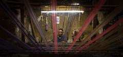 Iranian Weaver (Ash and Debris) Tags: workshop loom fiber tools look webster weaving man iran weaver craft threads master kashan handmade work yarn oldman craftsman
