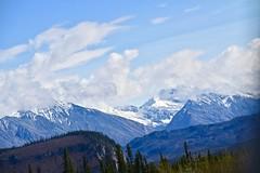 Mountain Splendor (neukomment) Tags: alaska road nabesnaroad mentastamountains mountains may 2019 spring wiiderness canoneosrebelt5i 18250mmf3563dcosmacrohsm sigmalens